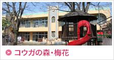 梅花保育園ホームページはこちら